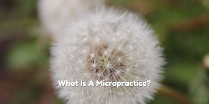 What is a micropractice and how can I find one in Broward County?