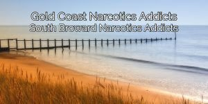 Narcotic Addicts of the Gold Coast and South Broward